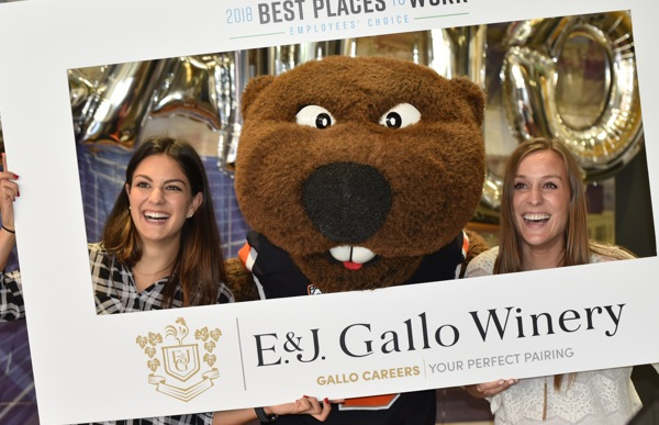 Two College of Business grads who work at Gallo